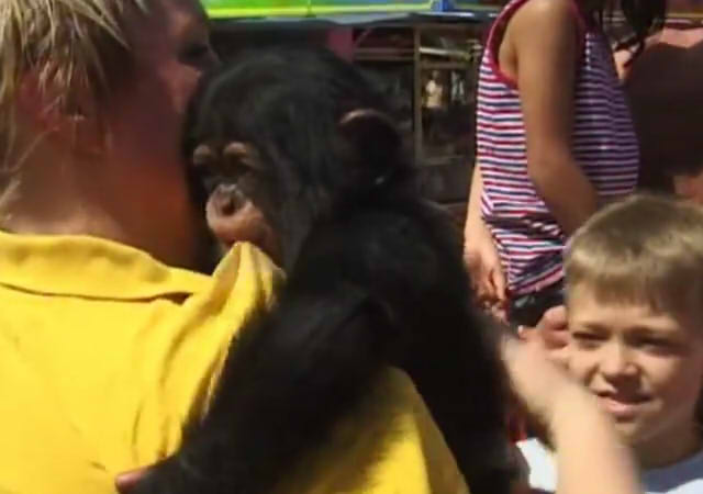 Cute and funny baby of chimpanzee12