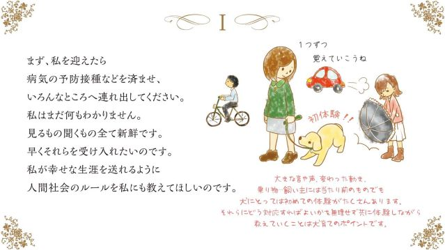 wishes-of-a-dog (2)-lll