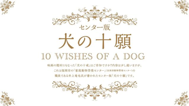 wishes-of-a-dog (1)-lll