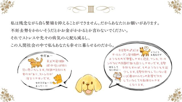 wishes-of-a-dog (4)-lll
