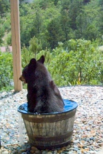 Water_tub (5)_s