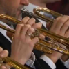 意外な展開へ!バレンボイムによるNew Year Concert 2014のラデツキー行進曲